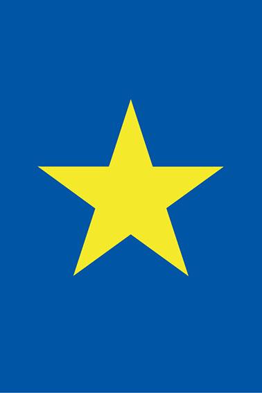 カールレイモン提案の旗