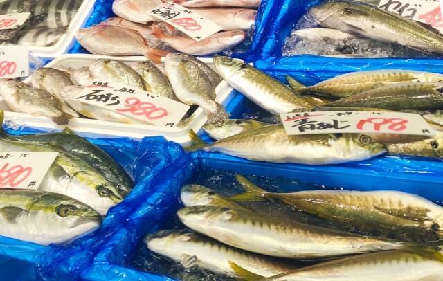 函館ランチ 海鮮の写真